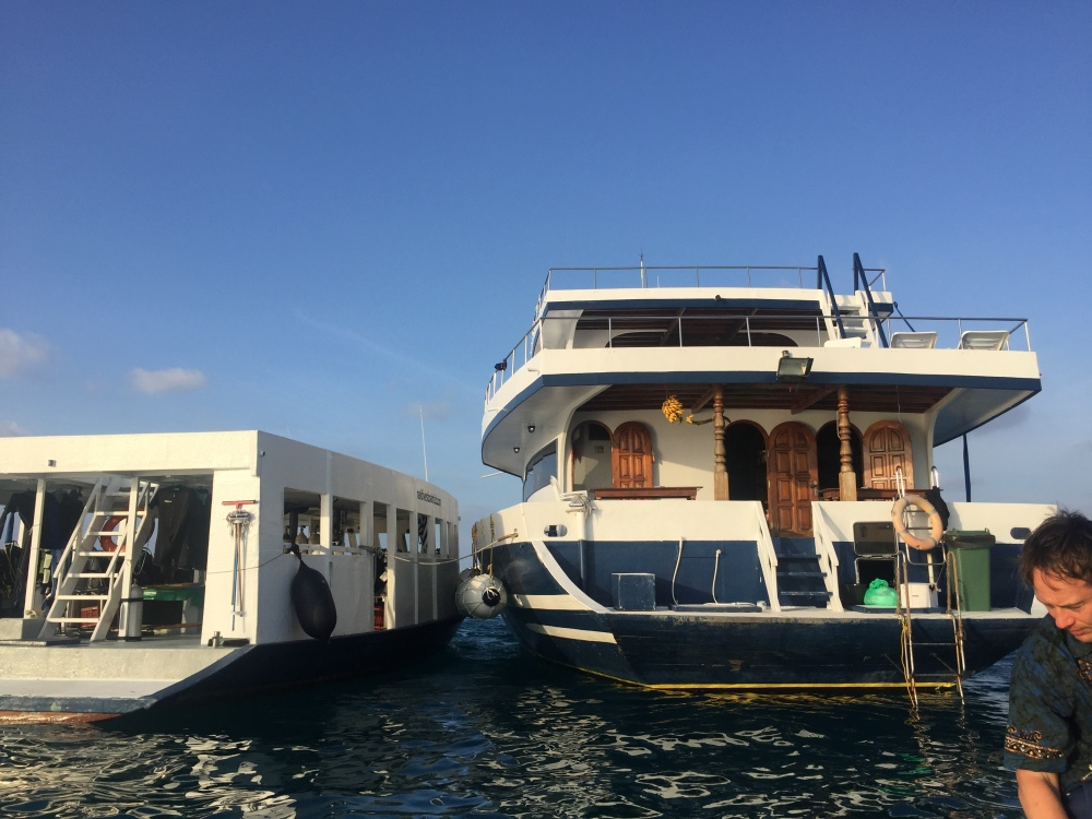 The MV Stingray and her dhoni